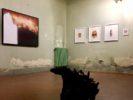 1_Effetto Serra @ Villa Pacini Battaglia_Bientina_Photo Ass Fotografica La Torre