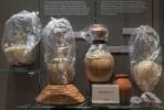 Museo Egizio, Torino_Federico Taverni_19S7489_analisi SIFT-MS