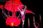 Sonics_acrobati__4
