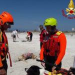 esercitazione_vigili_del_fuoco_soccorso_acquatico_2019_07_19_5