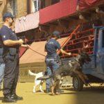 Polizia_Siena_Palio__1