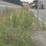 marciapiedi_ponte_a_egola_segnalazione_degrado_2019_08_17_3