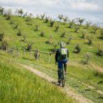 bici sentiero bike