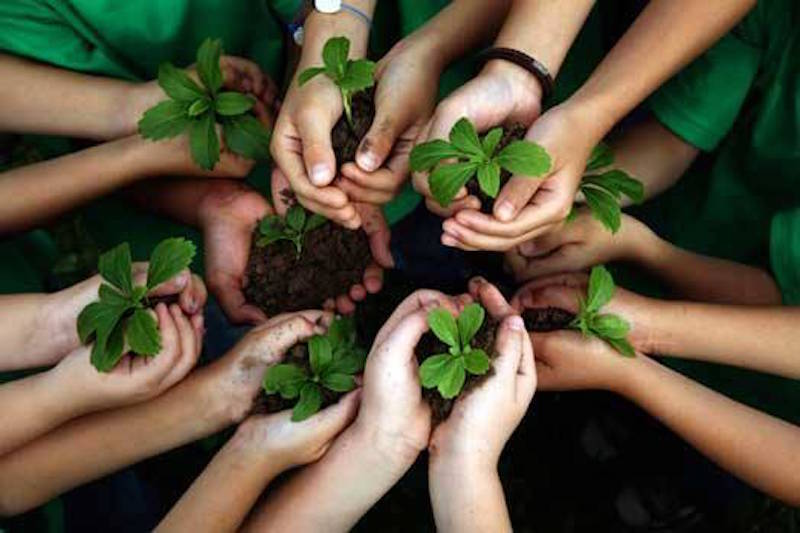 ambiente_educazione_ambientale_
