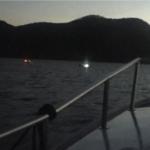 pesca notturna illegale