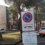 pini_tagliati_castelfiorentino_verdi_2019_10_16