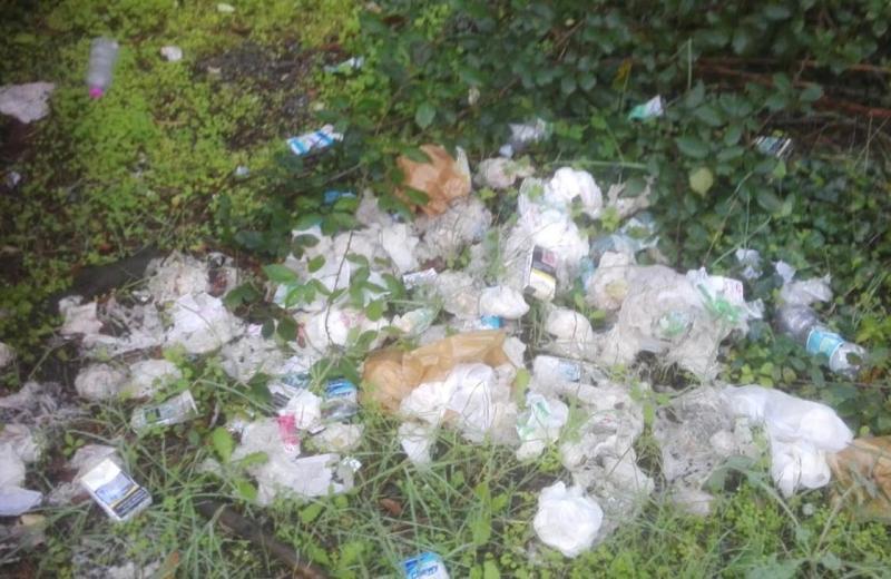 Rifiuti in strada, oltre 800 kg raccolti a Fucecchio - gonews