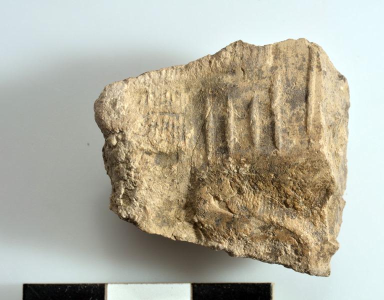 scavi_archeologici_universita_pisa_iraq_2019_11_25_ (5)