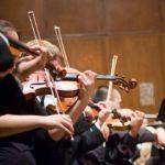 Professori dell'Orchestra del Maggio