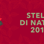 banner-laterale-stelle2019