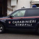 carabinieri_cinofili_generica_