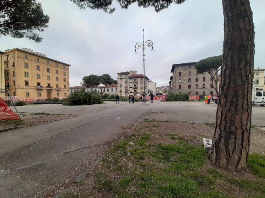Taglio dei pini in Piazza della Vittoria: proteste. Malore per una donna