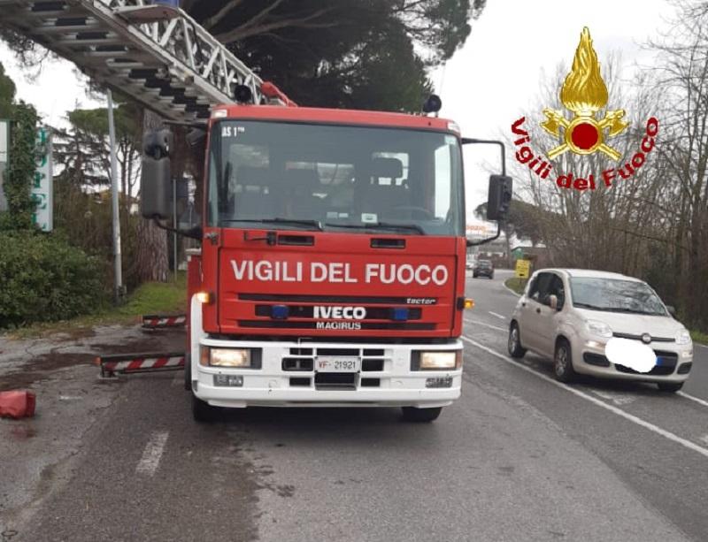 Maltempo nel Pisano, decine di interventi. Grosso albero cade sull'Aurelia