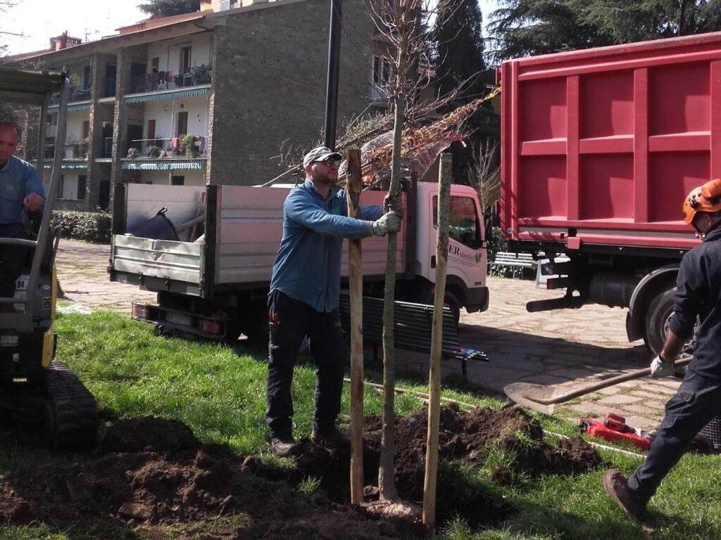 Arrivano oltre 1.600 alberi nei quartieri di Firenze