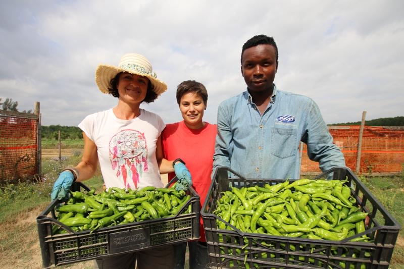 A Casa Ilaria l'agricoltura sociale batte le difficoltà: il futuro del progetto