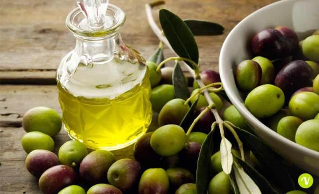 Camminata tra gli ulivi del Chianti, tre itinerari tra olio e natura