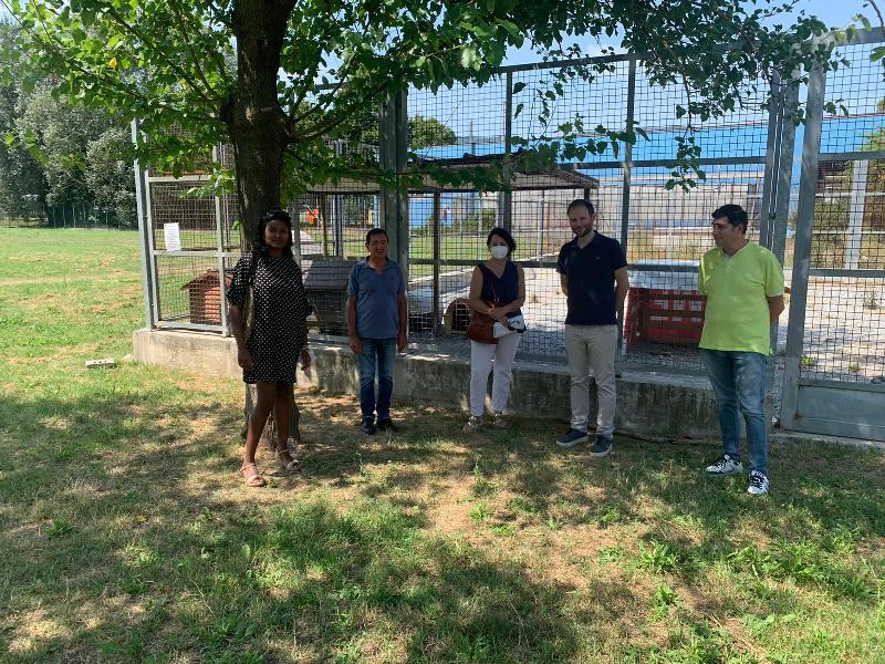 Canile sequestrato a Molazzana, Lucca accoglie cinque cani: come adottarli