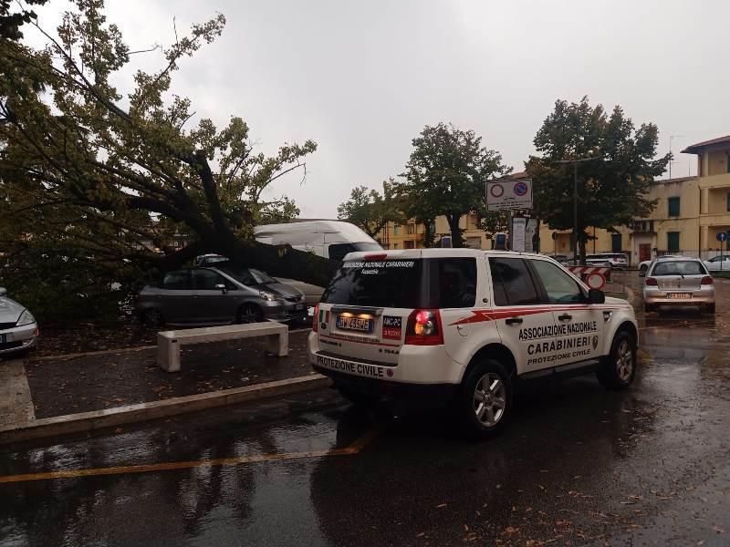 albero caduto piazza xx settembre fucecchio